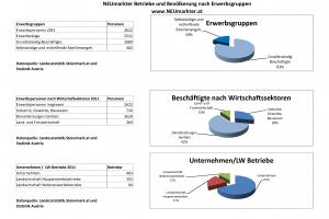 Auswertung NEUmarkter Betriebe und Bevölkerung nach Erwerbsgruppen