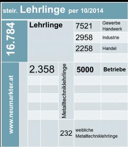 Lehrlinge in der Steiermark
